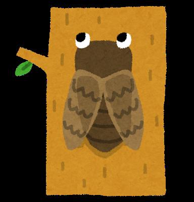 木に止まるセミのイラスト